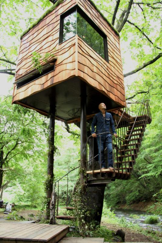 subiendo a la casa de un arbol por la escalera