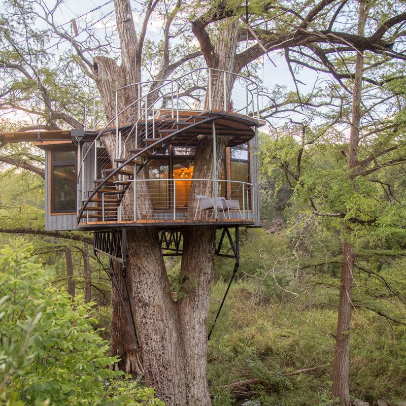 cabaña en el arbol con escalera de caracol