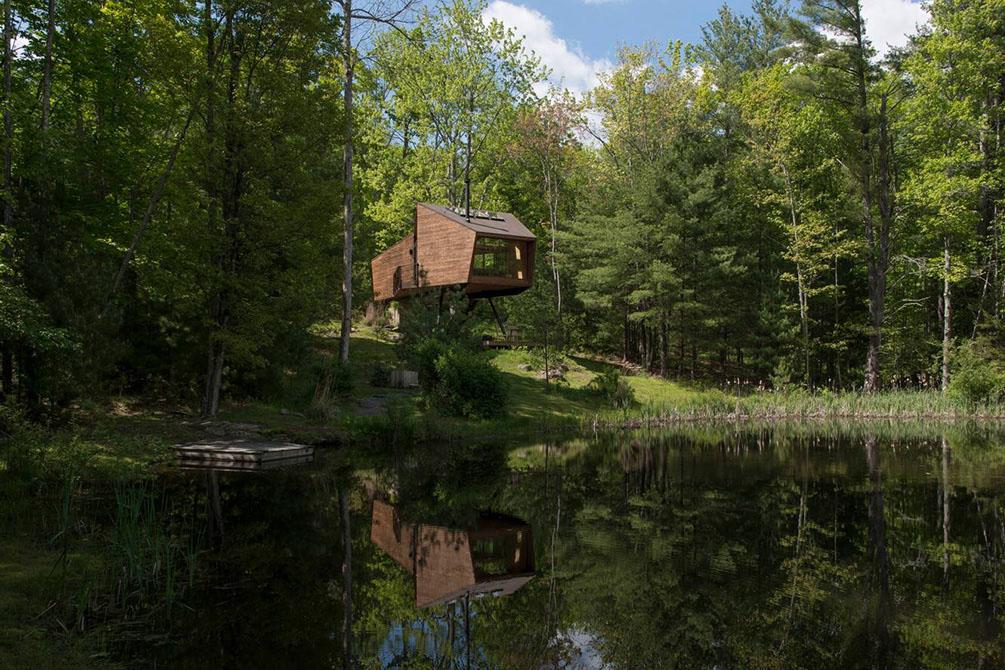 casa en el arbol sobre la orilla de un largo