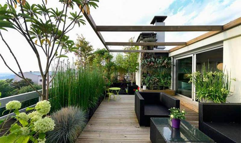 sofas de terraza con plantas naturales a su alrrededor