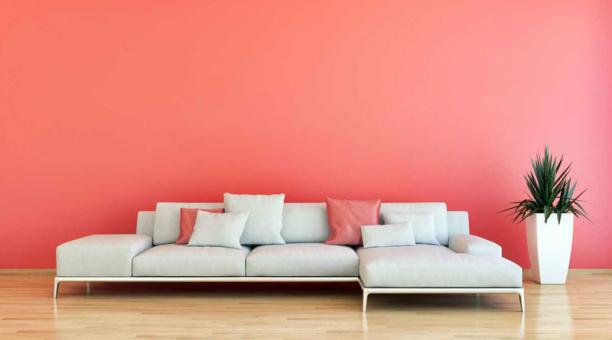 sofa gris con pared color Living Coral