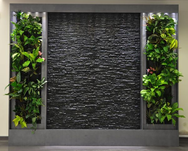 Pared de agua oscura para decoracion con plantas verdes