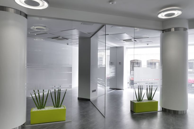 Mamparas de cristal con plantas verdes