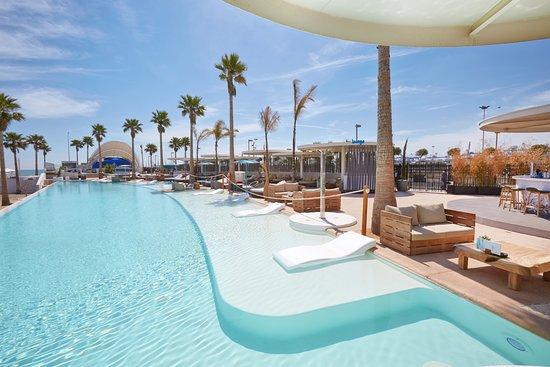 piscina con hamacas marina beach club
