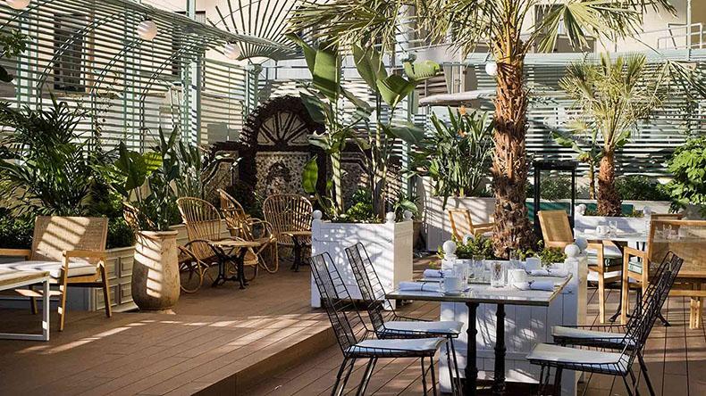 Terraza con sofas y palmeras