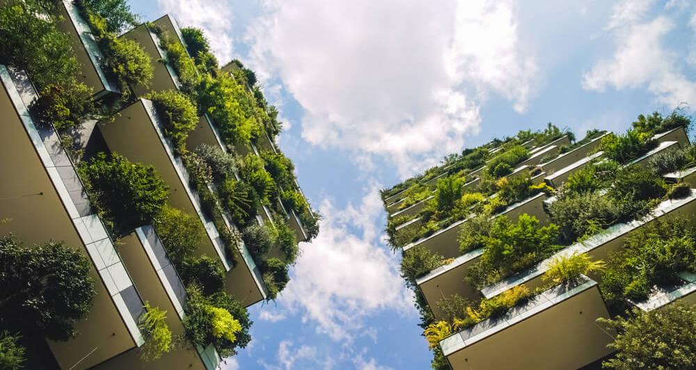 Edificios con plantas verdes